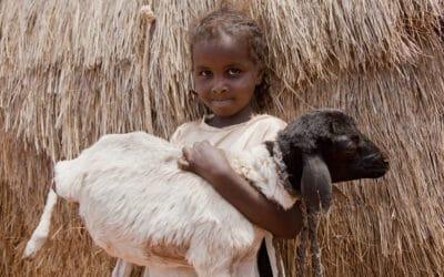 «Vacciner pour l'Afrique» 2020 – c'est parti!