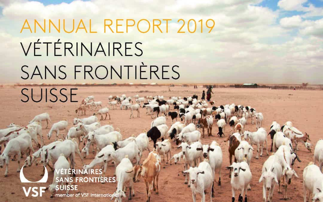The year 2019 at VSF-Suisse – in the annual report we look back on our work